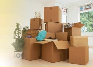 packers movers pune delhi