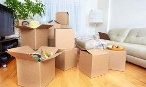 movers packers pune marunji